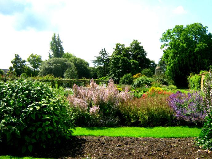 Cottage style garden