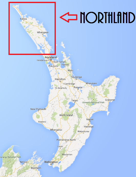 World Map Outline Png New Zealand's Northlan...