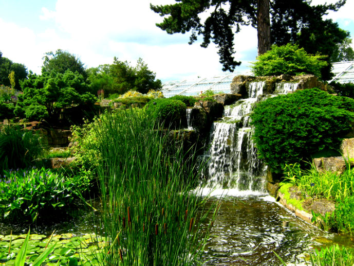 Waterfall in the Rock Garden