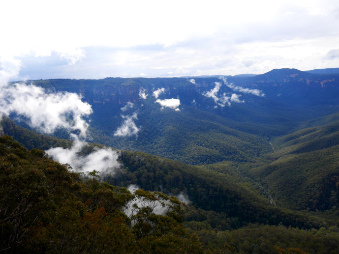 Lingering cloud at Evans Lookout