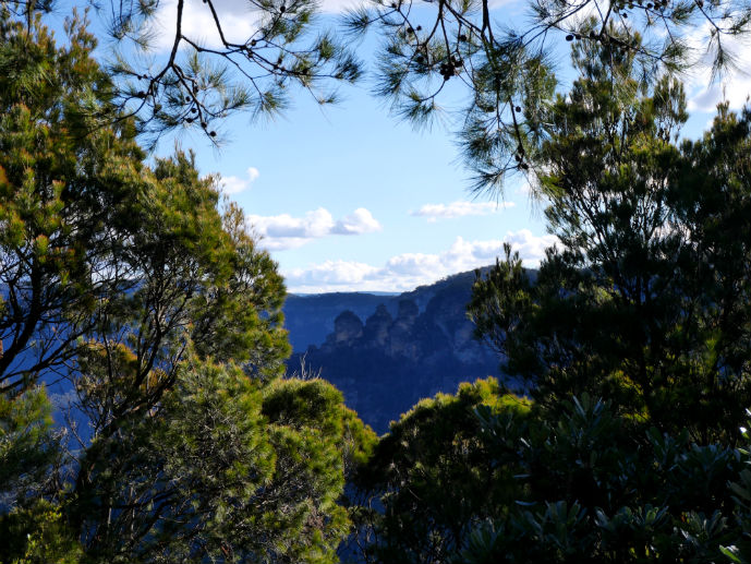 The back of the Three Sisters seen through the trees at Sublime Point Lookout