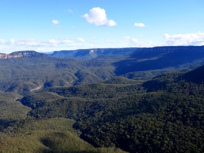 The rolling forest in the Jamison Valley viewed from Sublime Point Lookout