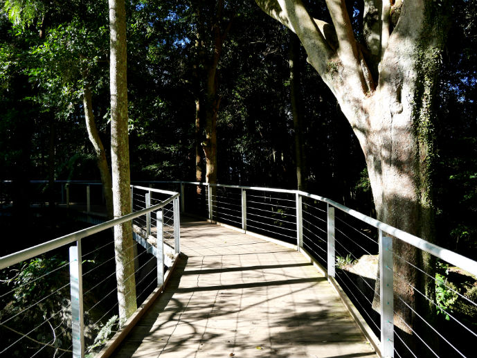Scenic Walkway in a rare moment of sunshine - Visiting Scenic World in Australia's Blue Mountains