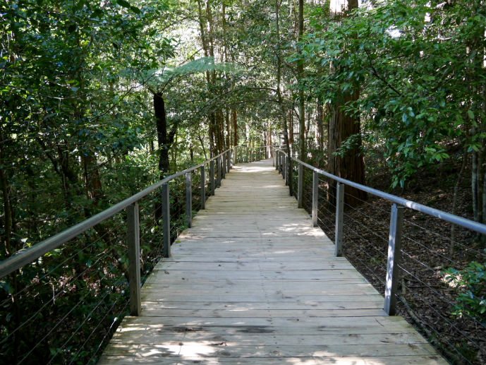Scenic Walkway - Visiting Scenic World in Australia's Blue Mountains