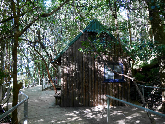 The miners hut on the Scenic Walkway - Visiting Scenic World in Australia's Blue Mountains