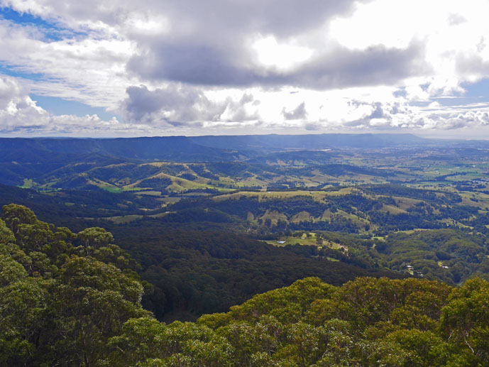 View from the Knights Tower - Visiting the Illawarra Fly Treetop Walk - The Trusted Traveller