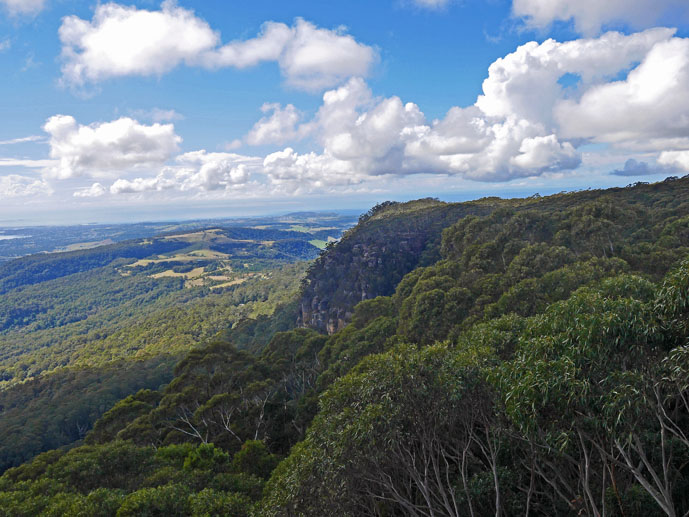 Amazing view! - Visiting the Illawarra Fly Treetop Walk - The Trusted Traveller