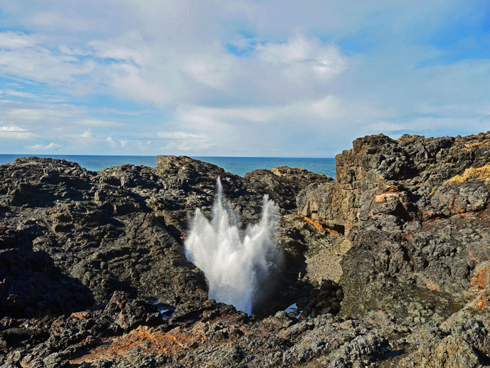 Kiama Blowhole - The Trusted Traveller