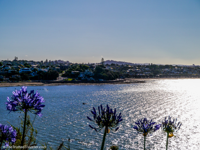 Mission Bay Auckland - Things to Do in Auckland - The Trusted Traveller