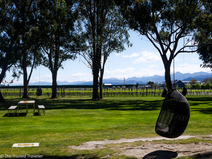 Beautiful views from the grounds of Cloudy Bay VIneyard - Sipping Sav: A Tour of The Marlborough Wine Region - The Trusted Traveller
