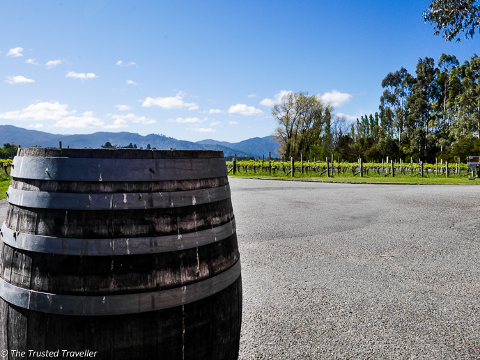 Exploring the grounds of Fromm Winery - Sipping Sav: A Tour of The Marlborough Wine Region - The Trusted Traveller