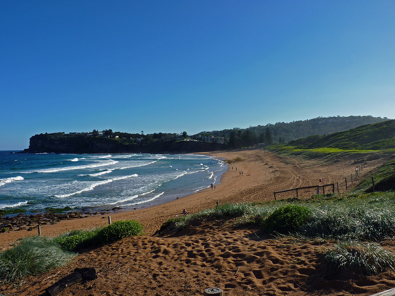 Avalon Beach - Sydney's Best Beaches: The Ultimate List - The Trusted Traveller