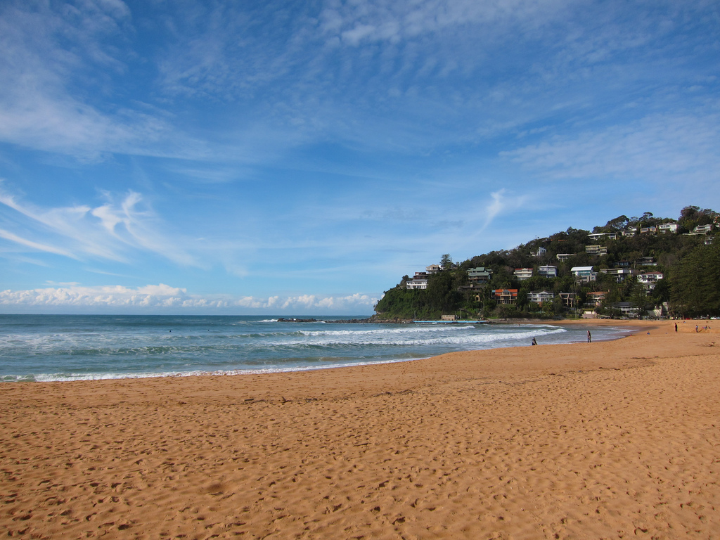 Palm Beach - Sydney's Best Beaches: The Ultimate List - The Trusted Traveller