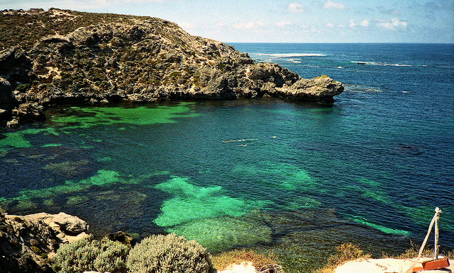 Snorkellers at Fish Hook Bay, Rottnest Island - Top 6 Places To Snorkel In Australia - The Trusted Traveller