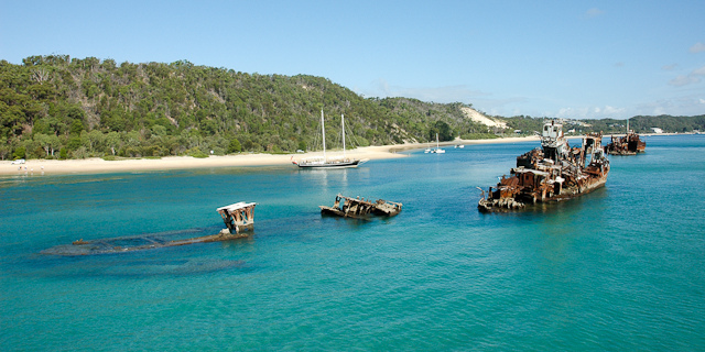 Tangalooma Wrecks off the coast of Moreton Island - Top 6 Places To Snorkel In Australia - The Trusted Traveller