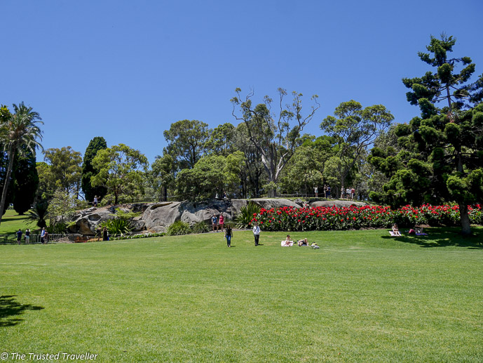 Sydney's Royal Botanic Gardens - 35 Free Things to Do in Sydney - The Trusted Traveller