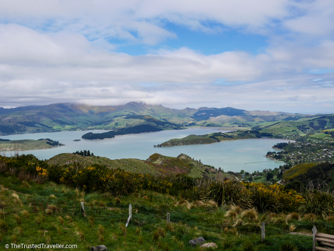 View from the Port Hills looking down over Lyttelton Harbour - What to See on a Day Trip to Akaroa from Christchurch - The Trusted Traveller