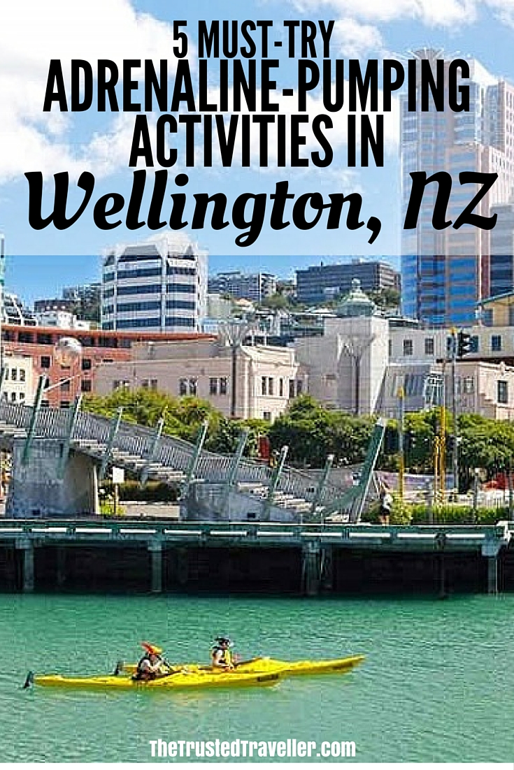Kayak Wellington - 5 Must-Try Adrenaline-Pumping Activities in Wellington NZ - The Trusted Traveller