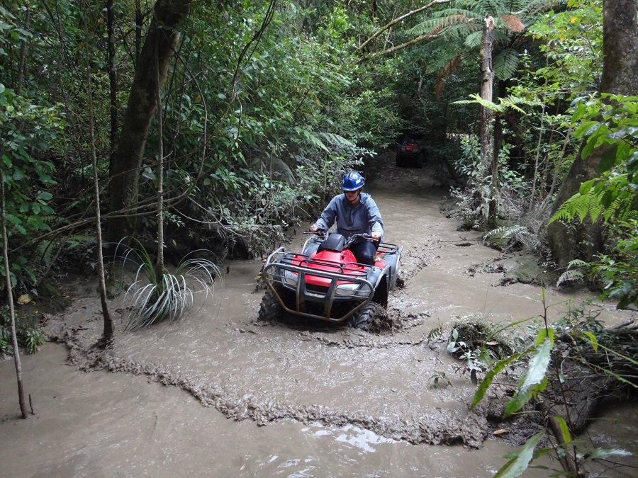 Kapiti Quad Bike - 5 Must-Try Adrenaline-Pumping Activities in Wellington NZ - The Trusted Traveller
