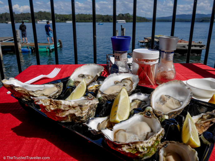The osyters we tried on the balcony of the Oyster Shed over looking the Clyde River - 7 Eurobodalla Culinary Delights That Should Not to Be Missed - The Trusted Traveller