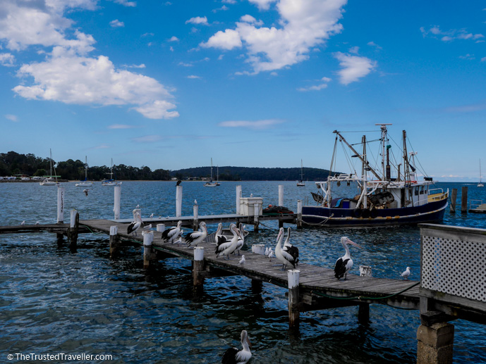 The Innes' Boatshed wharf - 7 Eurobodalla Culinary Delights That Should Not to Be Missed - The Trusted Traveller
