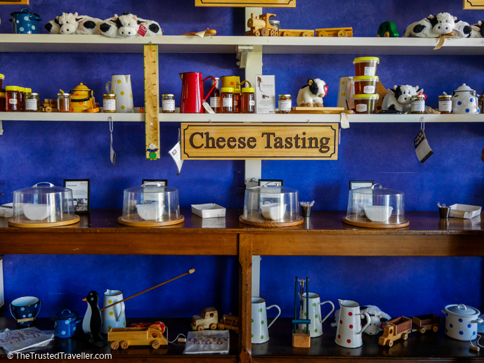 Cheese tasting at the Bodalla Dairy Shed - Things to Do in Eurobodalla on the NSW South Coast - The Trusted Traveller