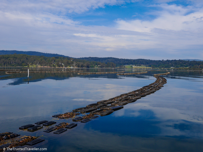 Oyster leases in the Pambula Lake - The Trusted Traveller