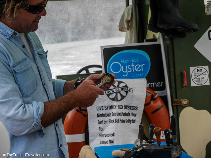 Sponge demonstrating how to shuck an oyster - A Magical Oyster Tour on the NSW South Coast - The Trusted Traveller