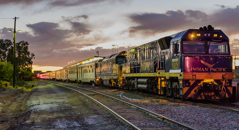 The Indian Pacific (image credit) - The Complete Guide to Getting Around Australia - The Trusted Traveller