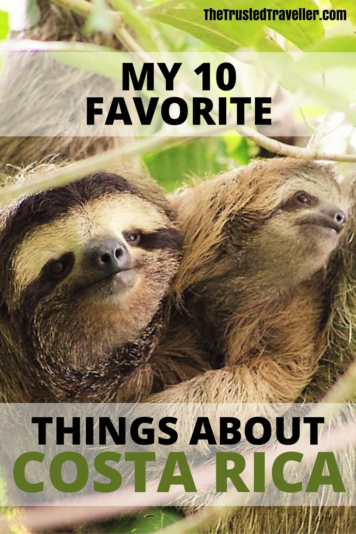 Animals don't come more cute than Sloths. They are one of my favorite things about Costa Rica. - My 10 Favorite Things About Costa Rica -The Trusted Traveller