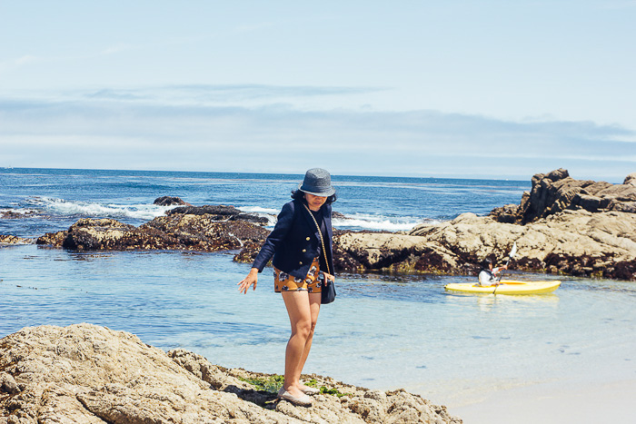 Carmel 17 mile drive - Exploring the Charm of Small Californian Towns - The Trusted Traveller