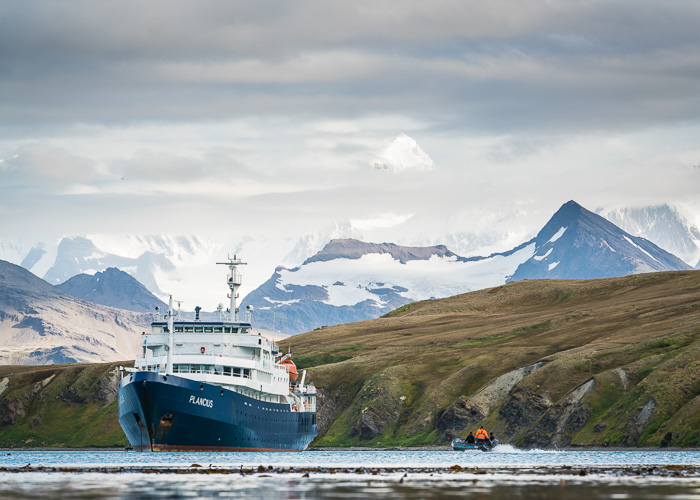 South Georgia, Grytviken - 15 Stunning Photos for Those Curious About Antarctic Cruises - The Trusted Traveller