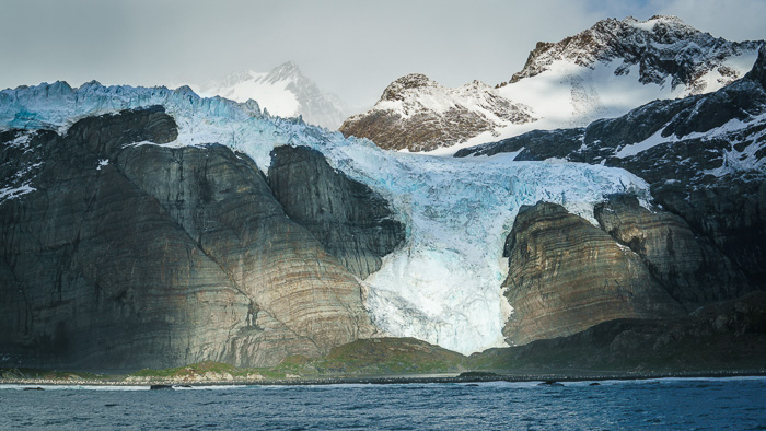South Georgia, Gold Harbour - 15 Stunning Photos for Those Curious About Antarctic Cruises - The Trusted Traveller