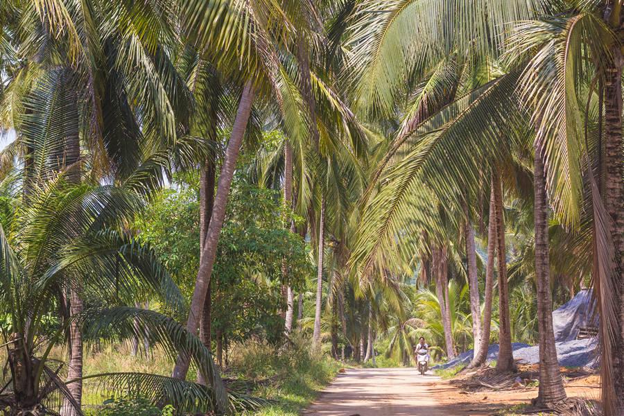 Exploring Koh Kood - One Week Island Hopping in the Gulf of Thailand: Koh Chang, Koh Kood, Koh Mak - The Trusted Traveller