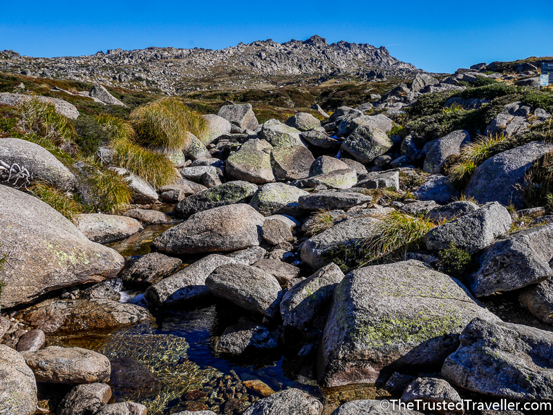 How to Climb Mt Kosciuszko - The Trusted Travaveller