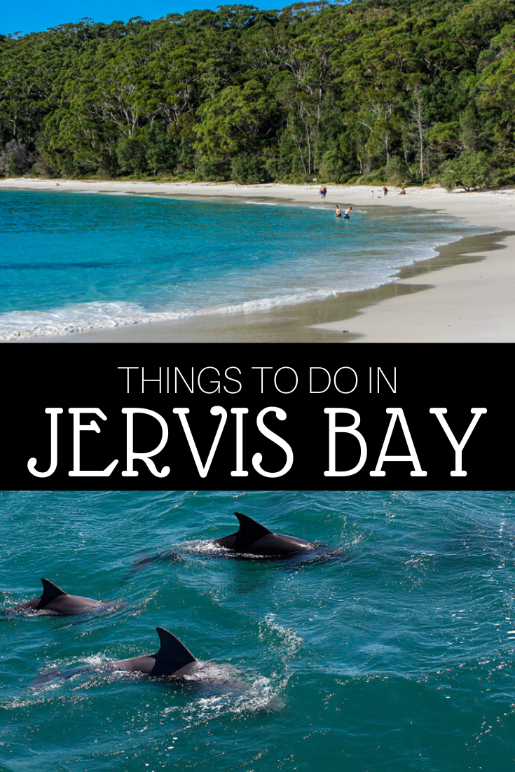 Things to Do in Jervis Bay - The Trusted Traveller